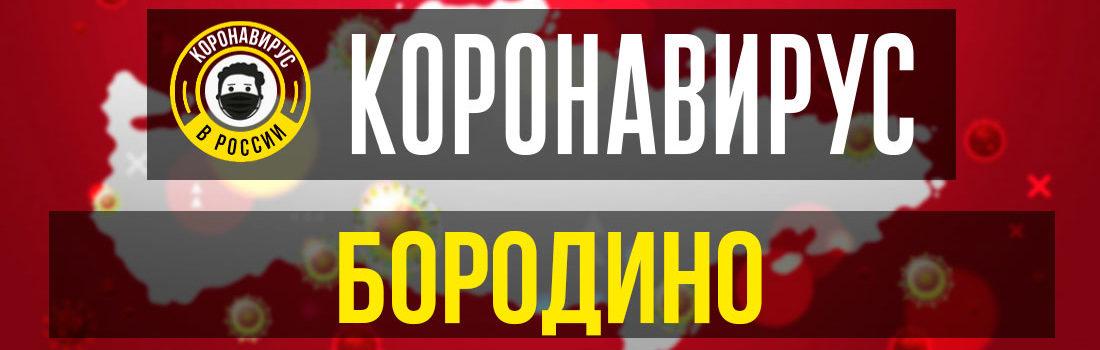 Бородино заболевшие коронавирусом: сколько зараженных в Бородино