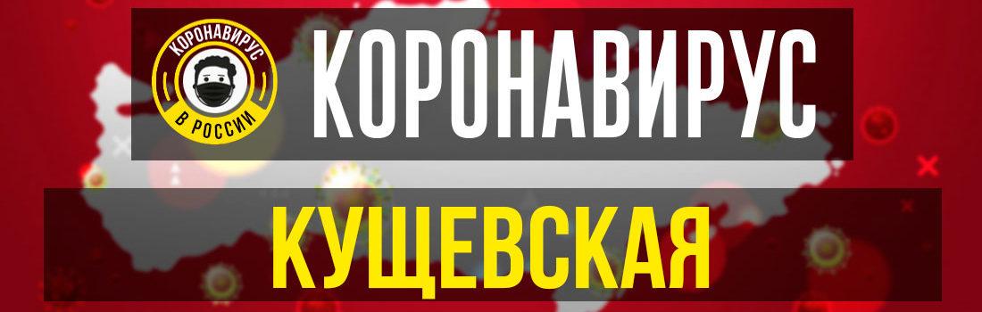 Кущевская заболевшие коронавирусом: сколько зараженных в Кущевской
