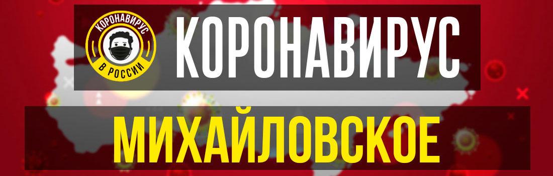 Михайловское заболевшие коронавирусом: сколько зараженных в Михайловском