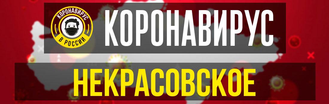 Некрасовское заболевшие коронавирусом: сколько зараженных в Некрасовском