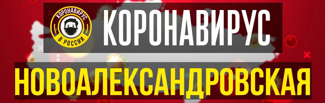 Александровская заболевшие коронавирусом: сколько зараженных в Александровской