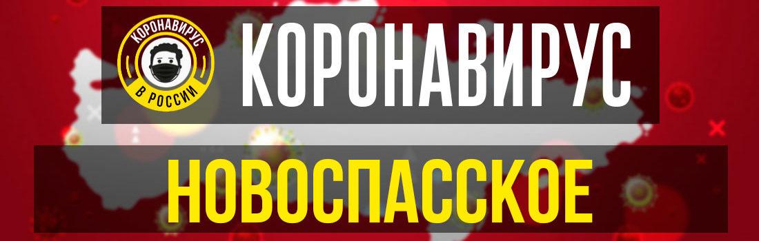 Новоспасское заболевшие коронавирусом: сколько зараженных в Новоспасском