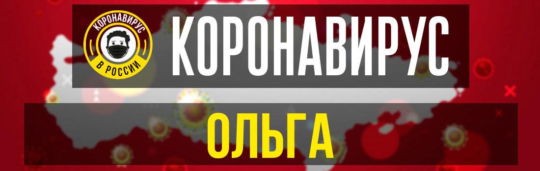 Ольга заболевшие коронавирусом: сколько зараженных в Ольге