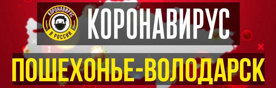 Пошехонье-Володарск заболевшие коронавирусом: сколько зараженных в Пошехонье-Володарске