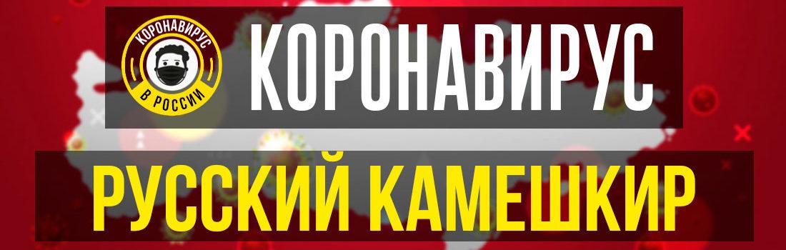 Русский Камешкир заболевшие коронавирусом: сколько зараженных в Русском Камешкире