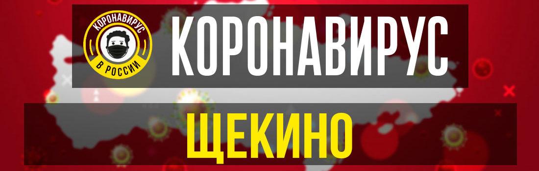 Щекино заболевшие коронавирусом: сколько зараженных в Щекино