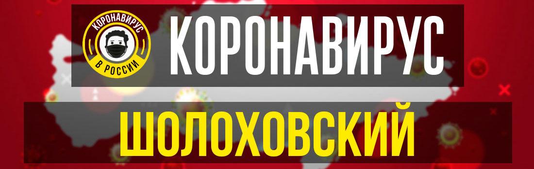 Шолоховский заболевшие коронавирусом: сколько зараженных в Шолоховском