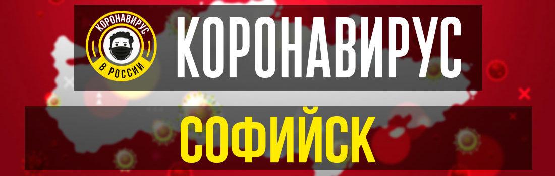 Софийск заболевшие коронавирусом: сколько зараженных в Софийске