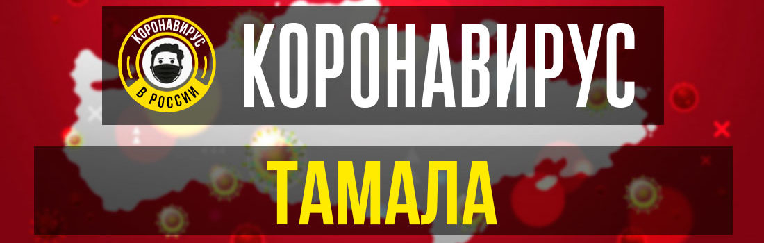 Тамала заболевшие коронавирусом: сколько зараженных в Тамале