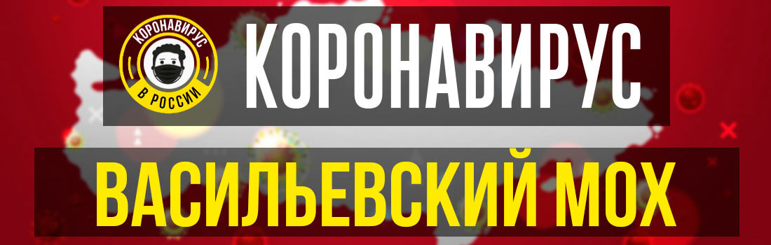 Васильевский Мох заболевшие коронавирусом: сколько зараженных в Васильевском Мху