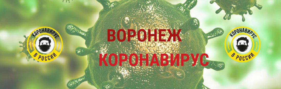 Реж заболевшие коронавирусом: сколько зараженных в Реже
